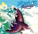 Flossenengel by Novalis (2012-06-05)