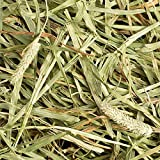 Small Pet Select Timothy Hay And Bedding Combo