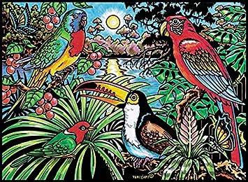 Malvorlage Samtbild Zum Ausmalen Motiv Vögel Im Urwald