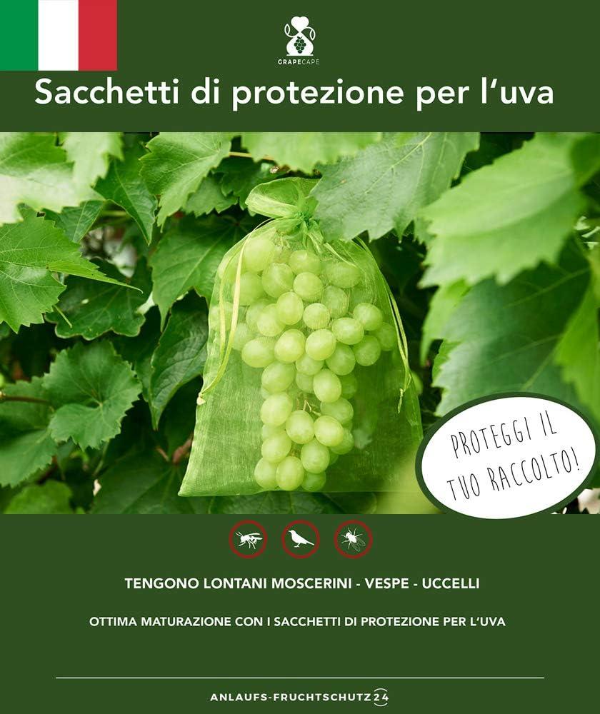 taille: 23x15 cm pour la protection contre les gu/êpes les oiseaux avec cordon Sac de protection des raisins 60 pcs couleur: vert mousse sac de protection des fruits en organza