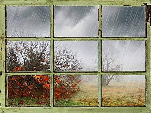 Window View Wall Mural Heavy Rain Vintage Style Wall Decor Peel and Stick Adhesive Vinyl Material