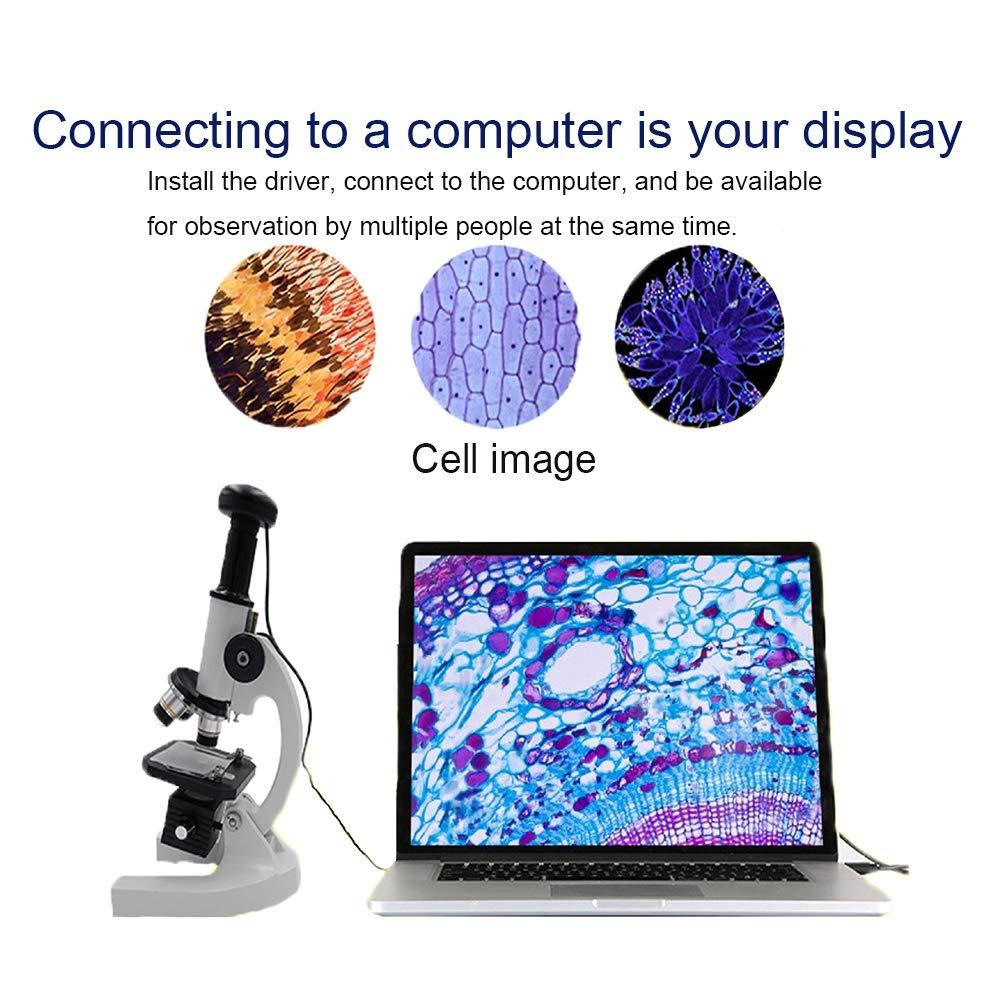 Qczgdhj Microscope, 40X-1600X Magnification, Student Compound Microscope Kit, Monocular Head, Glass Optics, Additional 12.5X Eyepiece by Qczgdhj