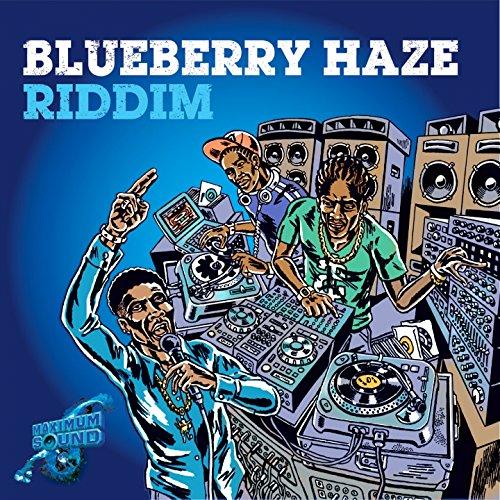 Blueberry Haze Riddim [Explicit]