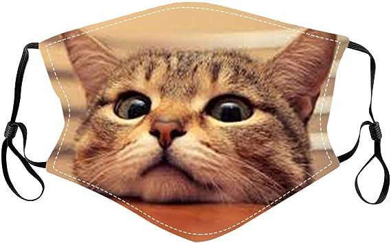 Bumplebee Herren Damen Mundschutz Mit Motiv Katze Print Maske Waschbar Mehrweg Multifunktionstuch Mund Und Nasenschutz Atmungsaktiv Halstuch Bandana Stoff Mehrfarbig Z13 One Size Bekleidung