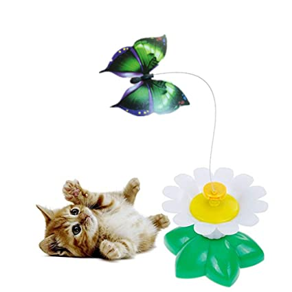 Amazon.com: ZWFUN juguete de mariposa para gatos, gatos de ...