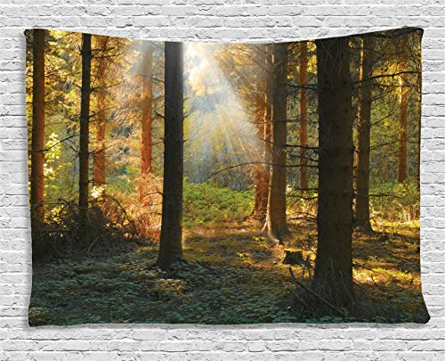 Ambesonne Forest Tapestry Farm House Decor, Sunset View of Dark Pine in Autumn Foggy Scene with Sunbeams Trunks Shadow, Bedroom Living Room Dorm Wall Hanging, 80 X 60 Inches, Orange Green (Pine Trunk)