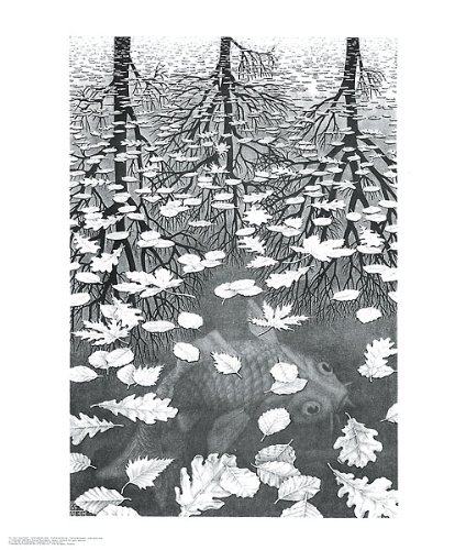 Three (3) Worlds M. C. Escher Fantasy Nature Poster, used for sale  Delivered anywhere in USA