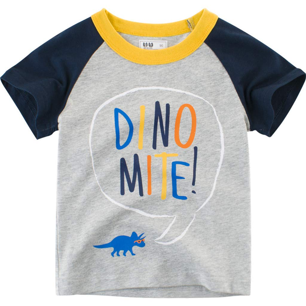 Lavany Baby Boys Shirts Dino Printed Short Sleeve Clothes Tee for Baby Gray