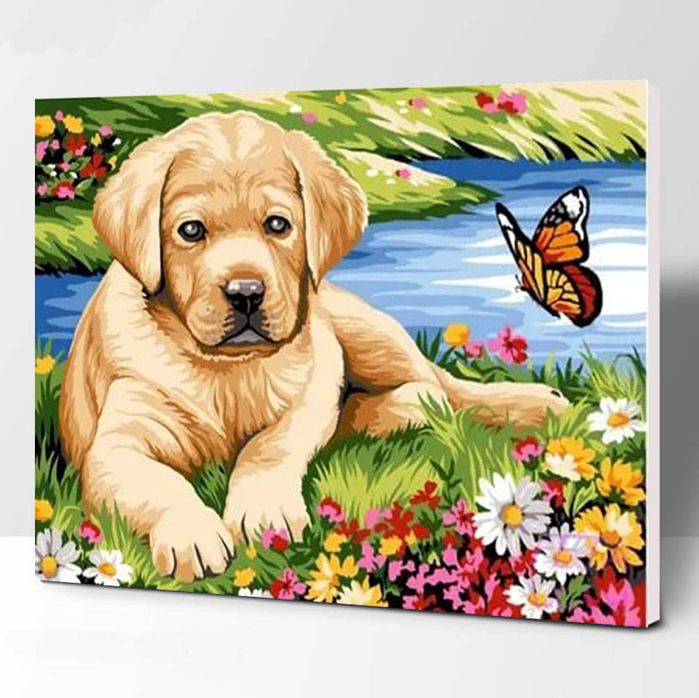 iFymei Paint by Number Kits Paintworks DIY Oil Painting for Kids and Adults Beginner, Animals Painting on Canvas 16x20inch ( Dogs and Butterflies Framed )