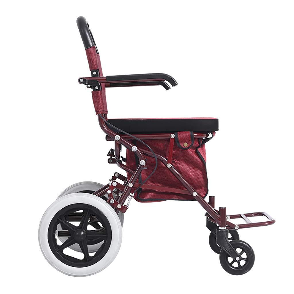 ZXL Ayuda a la Movilidad para Caminar Plegable Caminante ...