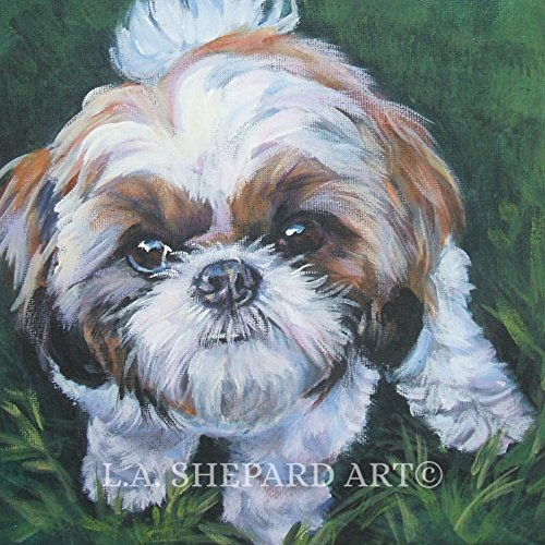 (A Shih Tzu dog art portrait print of an LA Shepard painting 8x8