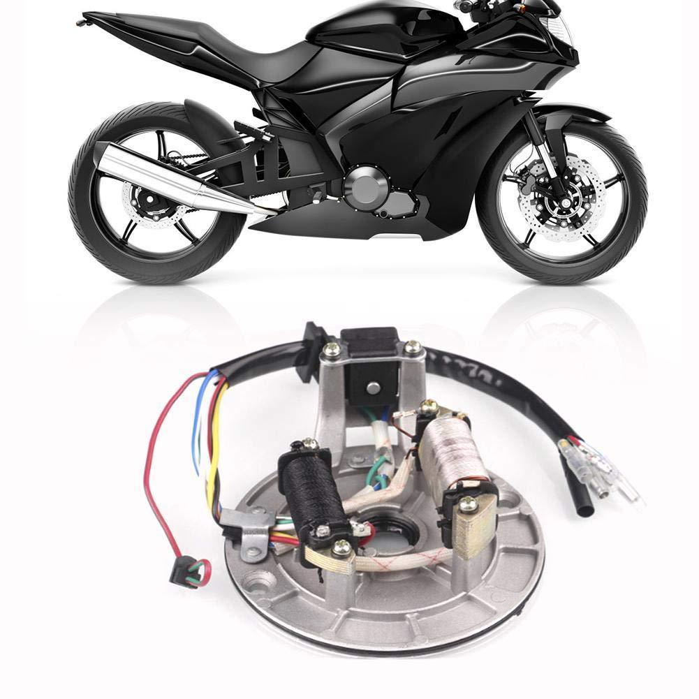 Nrpfell Placa De Estator De Encendido Magneto para 50 70 90 110Cc Dirt Pit Bike ATV Go Kart
