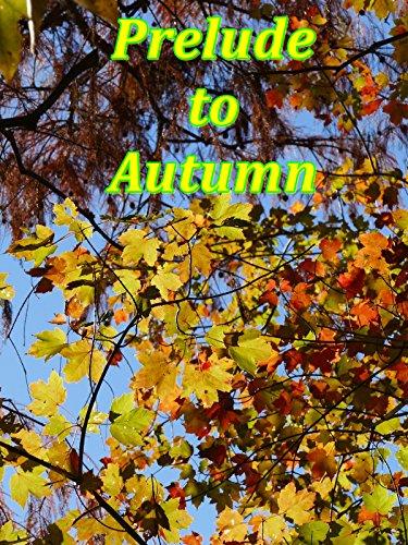 Prelude to Autumn (The Falls Miami, Florida)