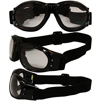 Birdz Eyewear Eagle Motorcycle Goggles (Black Frame/Clear Lens): Automotive