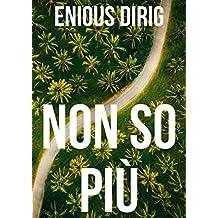Non so più (Italian Edition)