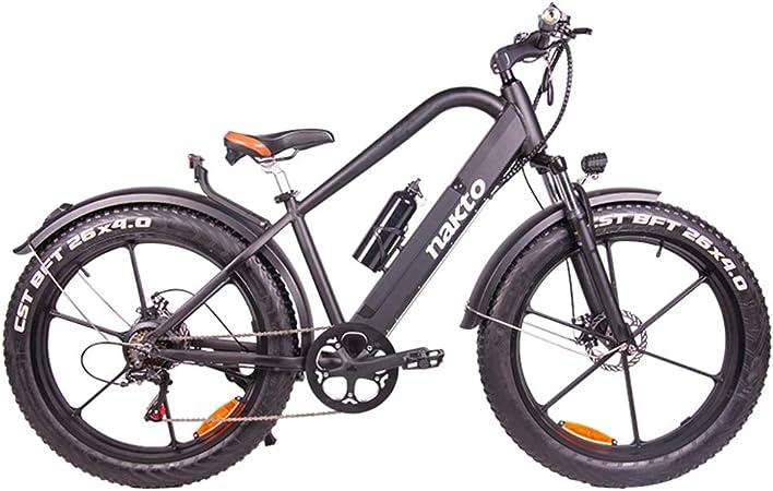 FYJK 26inch Fat Tire Bicicleta eléctrica 400W 48V Nieve E-Bici ...
