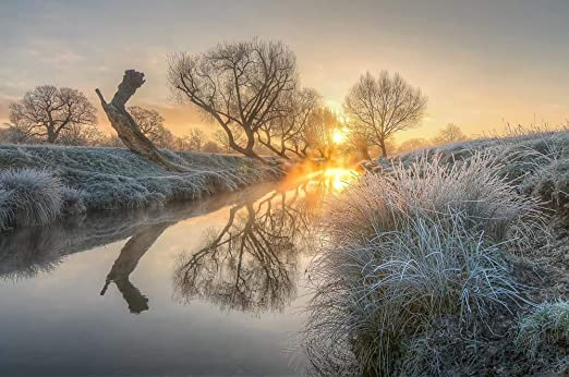 Amazon Com Sunrise Burns The Early Morning Mist Off Beverly Brook Richmond Park 2 By Nick Jackson Art Print 15 X 10 Inches Posters Prints