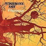 Pilgrimage - Cardboard Sleeve - High-Definition CD Deluxe Vinyl Replica + 1 Bonus Track - IMPORT by Wishbone Ash (2015-05-03)
