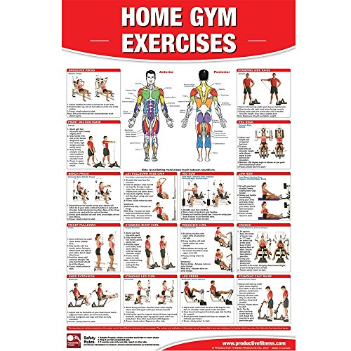 Productive fitness laminated poster for basic home gym