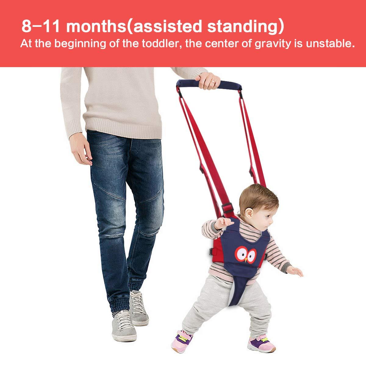 Lauflernhilfe Gehhilfe f/ür Baby Achort Stehen und Gehen Lernen Helfer f/ür Kinder 4 in 1 Funktionale Sicherheit Laufgeschirr Walker f/ür Baby 6-24 Monate