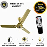 Gorilla Energy Saving 5 Star Rated 1200 mm Premium Ceiling Fan With Remote Control And Bldc Motor- Gold