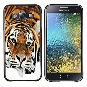 "Be-Star Único Patrón Plástico Duro Fundas Cover Cubre Hard Case Cover Para Samsung Galaxy E5 / SM-E500 ( Triste Tiger Stripes Naranja felino"" )"