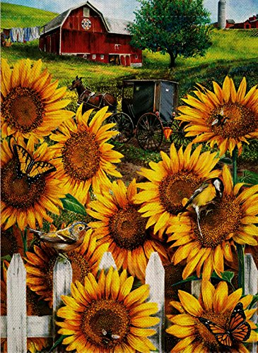 Garden Oriole (Dyrenson Home Decorative Outdoor Country Farm Garden Flag Sunflowers Double Sided, Horses House Yard Flag, Orioles Bird Garden Yard Decorations, Mountain Bees Seasonal Outdoor Flag 12 x 18 Paradise)