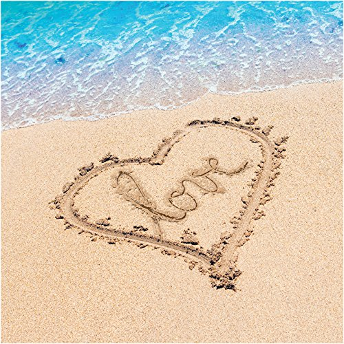 Beach Party Plate - Creative Converting 667363 Beach Love Luncheon Napkin, One Size, Multicolor