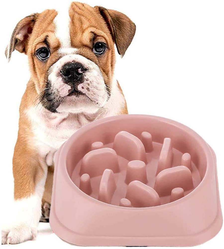 DotPet Slow Feeder Bowl, Fun Interactive Feeder Bloat Stop Dog Bowl Preventing Feeder Anti GulpingDrink Water Bowl Fan Shape Healthy Eating Diet for Puppy Dog Pet (Pink)