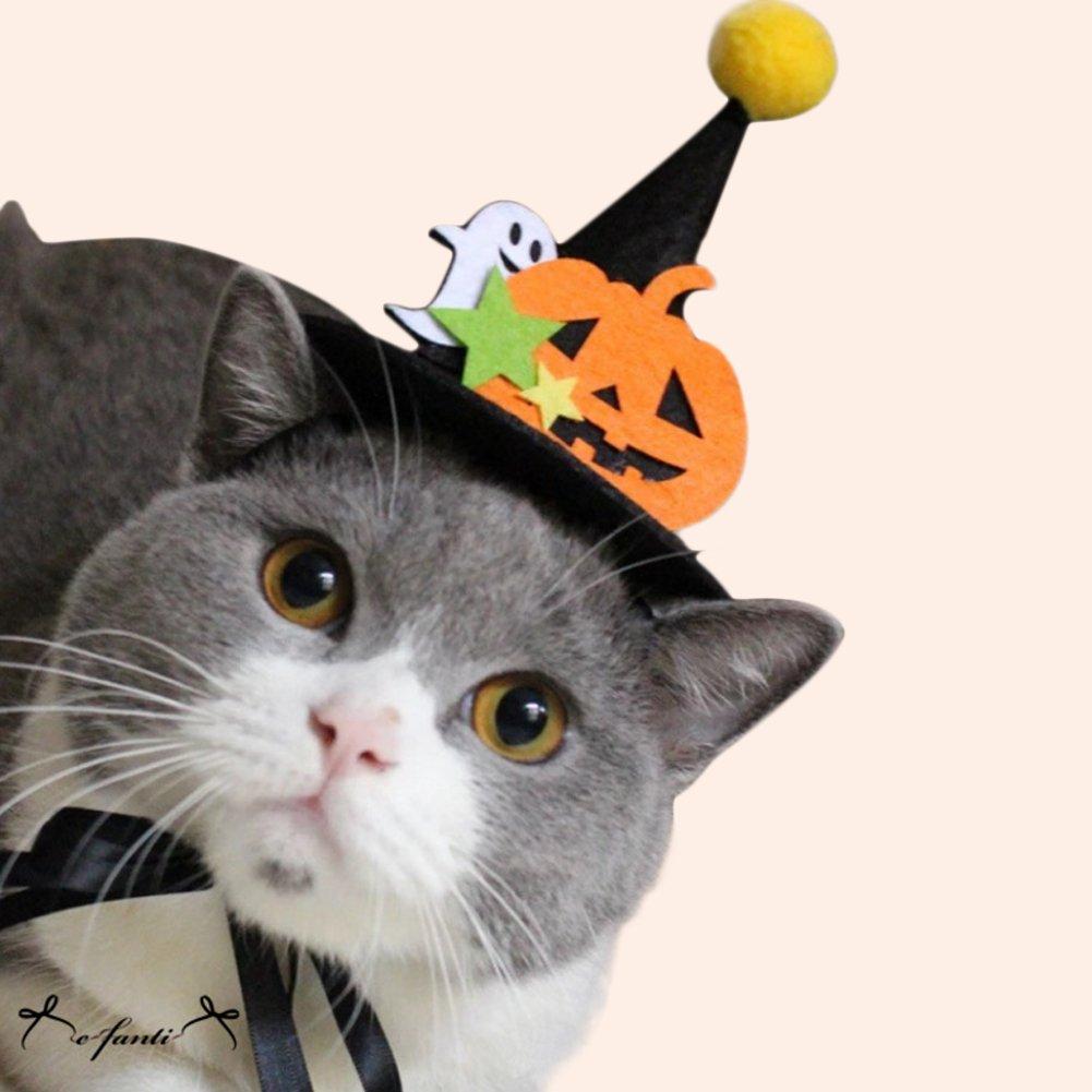 ペット ハロウィン カボチャ 帽子 かわいい ネコちゃん ワンちゃん