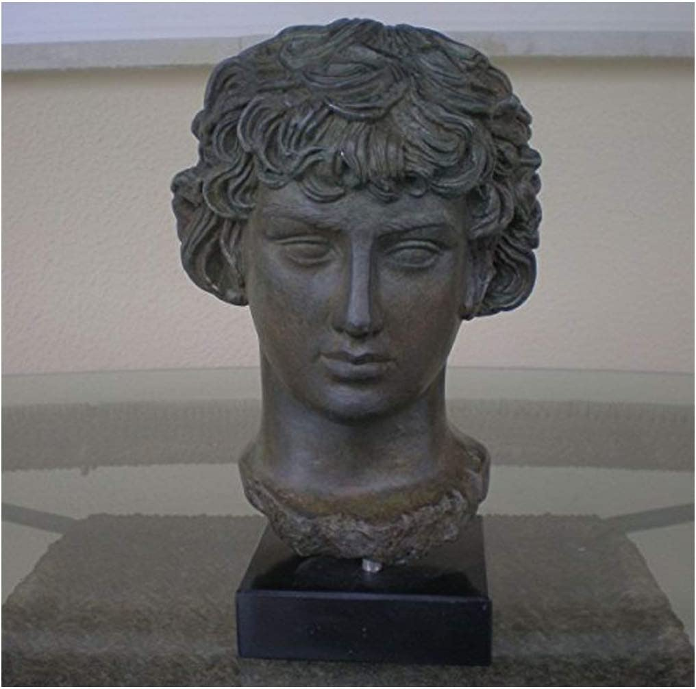 Hand Made Antinous Bust with Bronze Effect -Antinoos- Ancient Rome-Greece- Beautiful Item