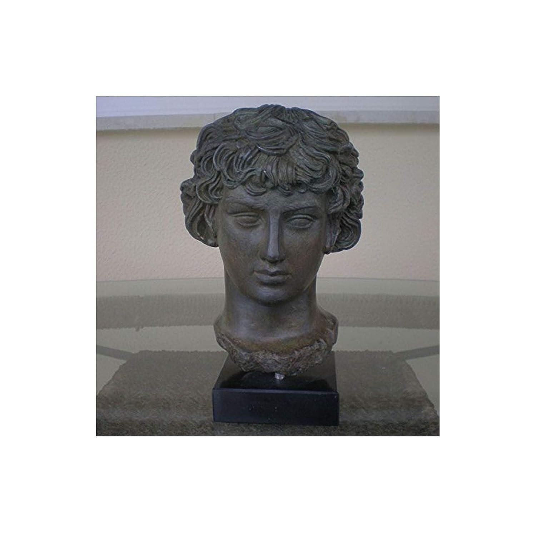 Antinoos Büste mit Bronze Effekt – antinoos- Alte rome-greece- wunderschönen Artikel