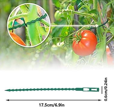 Faviye Fascette stringicavo per Piante in plastica Clip Regolabili per Piante cetrioli e Altri riutilizzabili 5 Pezzi Rose per pomodori