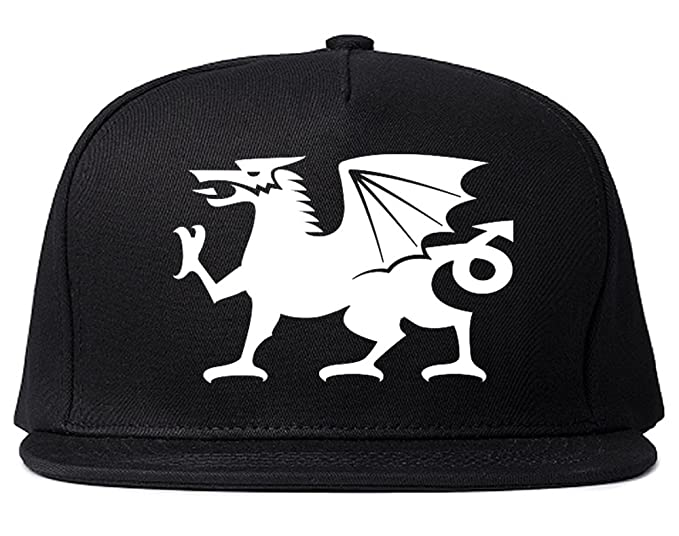 Wales Flag Dragon Symbol Snapback Hat Cap Black At Amazon Mens