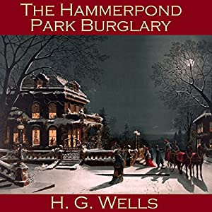 The Hammerpond Park Burglary Hörbuch