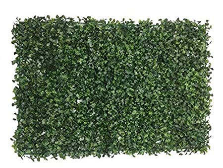 Badshah Craftsvilla® Plastic Vertical Garden Mat with Artificial leaves for vertical gardening, covering roof, cover wall, garden decor, home decoration (Pack of 1) Artificial Plants at amazon