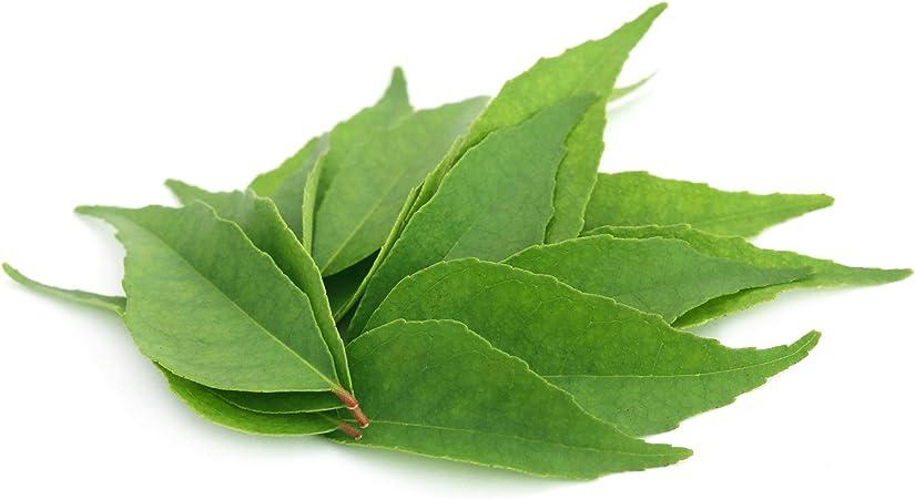 HIERRO DE ORIGEN VEGETAL (Murraya koenigii) * 233.5 mg / 60 cápsulas * Deficiencias (hemoglobina), Energia (fatiga), Inmunitario * Garantía de ...