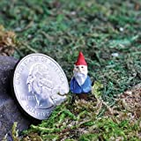 LXQ Miniature Dollhouse FAIRY GARDEN Micro Mini Gnome Pick For Sale
