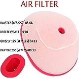 Toygogo Filtre /à Air Convient pour Yamaha ATV YFM125 Breeze YFA125 Grizzly De Haute