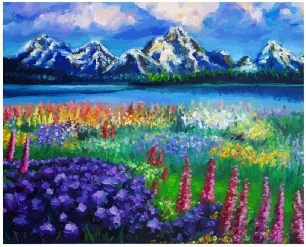 Diy pintura al óleo por números pintura por número kits-flores silvestres prados y montañas pintado a mano pintura al óleo impresión arte de la pared decoración del hogar lienzo p-No Frame-40x50cm