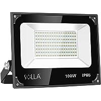 100W LED Flood Light Outdoor, Super Bright Work Light, 8000lm, IP65 Waterproof Exterior Lights, 6000K Daylight, Indoor…