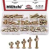 Hilitchi 100-Pcs M6 x 15 / 20 / 25 / 30 / 35mm Zinc Plated Hex Drive Socket Cap Furniture Barrel Screws Bolt Nuts Assortment Kit for Furniture Cots Beds Crib and Chairs