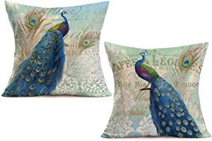 Royalours Throw Pillow Covers 2Pack Colorful Peacock with Vintage Feather Decorative Square Pillowcases Cotton Linen Throw Pillow Case Cushion Cover 18 X 18 Inch (Peacock Tail)