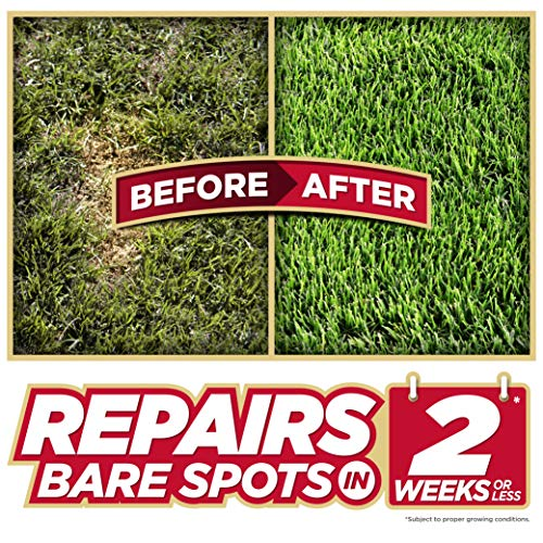 Pennington Bare Spot Repair Mix, All Climates