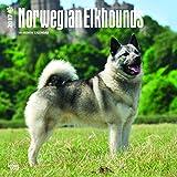Norwegian Elkhounds Wall Calendar Dogs 2018 {jg} Best Holiday Gift Ideas - Great for mom, dad, sister, brother, grandparents, , grandchildren, grandma, gay, lgbtq.