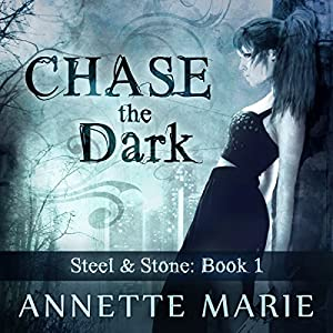 Chase the Dark Audiobook