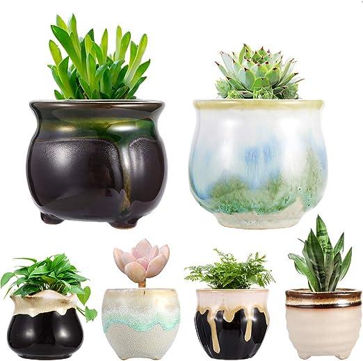 Macetas de cerámica suculentas pequeñas macetas de flores de bonsái, macetas con agujero para flores, macetas de jardín, decoración para el hogar y la oficina, juego de 6: Amazon.es: Jardín
