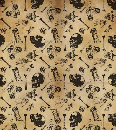 2 Sheets of Bone Anatomy Archaeology Gift Wrap and 2 Bone Gift Tags