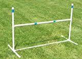 Agility Gear Training Jump (One Jump with One 48 inch Striped Bar)