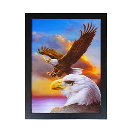 a72b3631b6d7a Amazon.com  Fancy Crafts 3D Lenticular Picture Eagle Poster  Posters ...